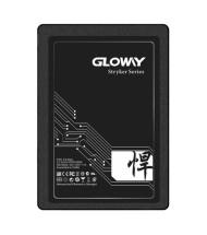 حافظه SSD اینترنال 960 گیگابایت گلووی FER Series